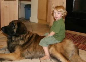 kids-dogs-31
