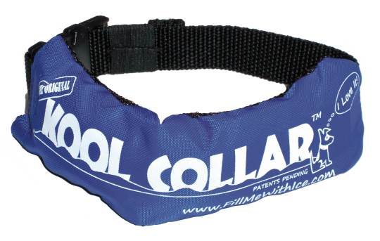 koolcollar-web