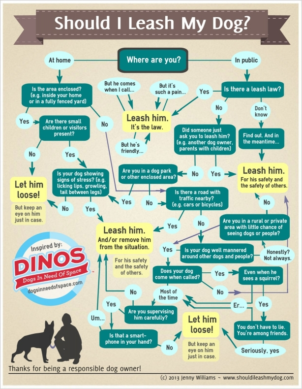 Download and print the pdf here to share! Note: this is not available for commercial use. Jenny Williams gets all the props for this one. Please be sure to give her credit when you share it. And check out her site: ShouldILeashMyDog.com for more!