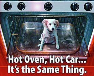 hot-car-hot-oven2